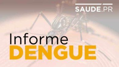Foto de Casos de dengue sobem para 128,4 mil no Paraná