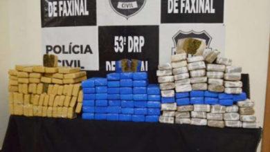 Photo of Polícia apreende mais de 120 kg de maconha e prende ex-vereador