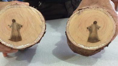Photo of Imagem de 'Jesus' aparece em árvore no MS; biólogo explica