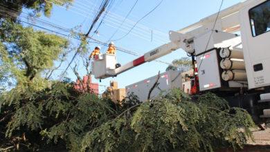 Photo of Ciclone bomba. Evento mais grave da história da Copel mobilizou 2,7 mil eletricistas